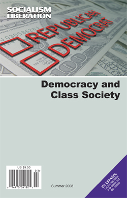 Democracy and Class Society